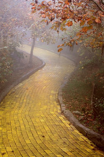 Yo were going here because then we can say we walked on the yellow brick road. Yellow Brick Road, Beech Mountain, N