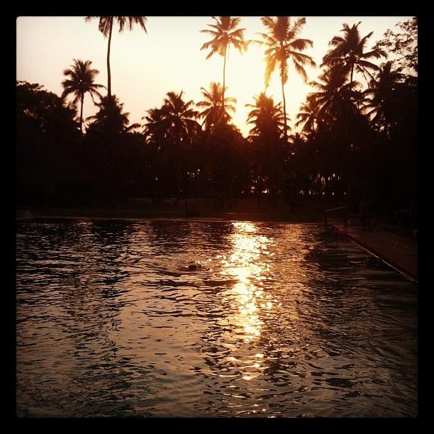Alleppy, Kerala by wadlingbury, via Flickr