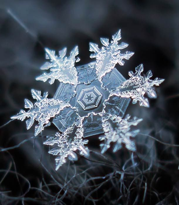Les flocons de neige photographiés en macro-photographie par Alexey Kljatov