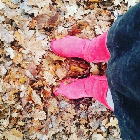 Polish autumn has just come