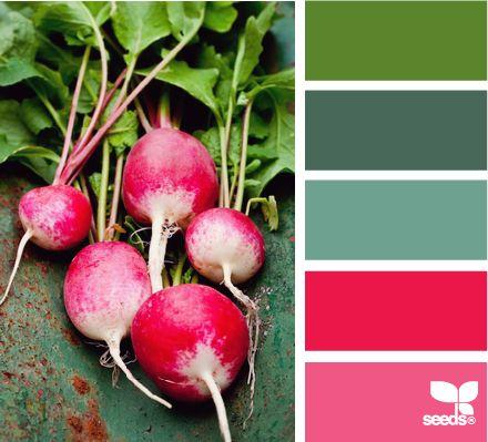 radishing color