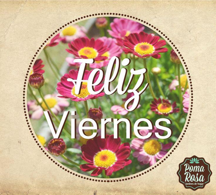 ¡Finalizar ésta linda semana con una sonrisa de VIERNES!