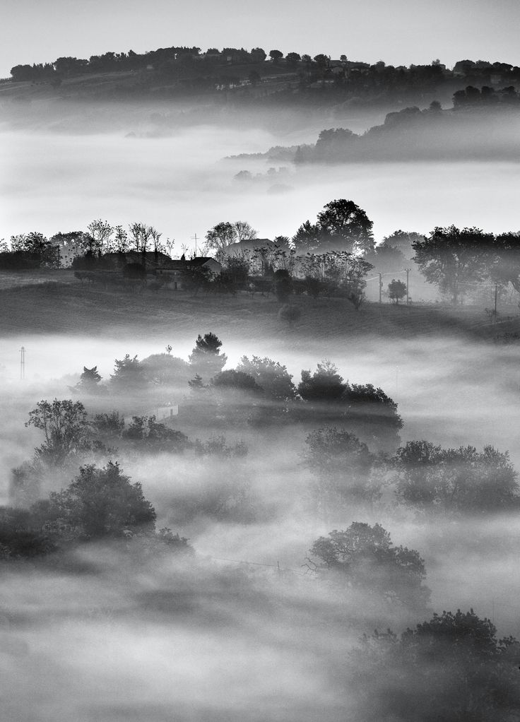 The Veil - Countryside of Macerata, Marche, Italy