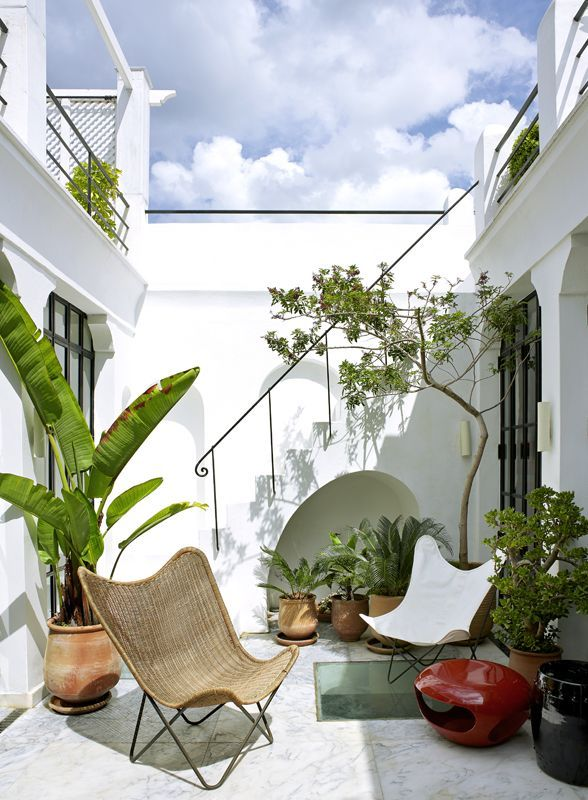 DETAILS ORIENTED by shape+space | getniwa.com #niwa #smartliving #gardening