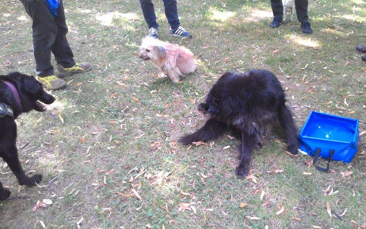 09/07/2015 - Torino con Peja e Elvis