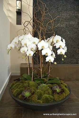 Quero compartilhar com vocês essas sete fotos de lindo arranjos para decoração com orquídeas.   Espero que isso inspire o seu final de sema...