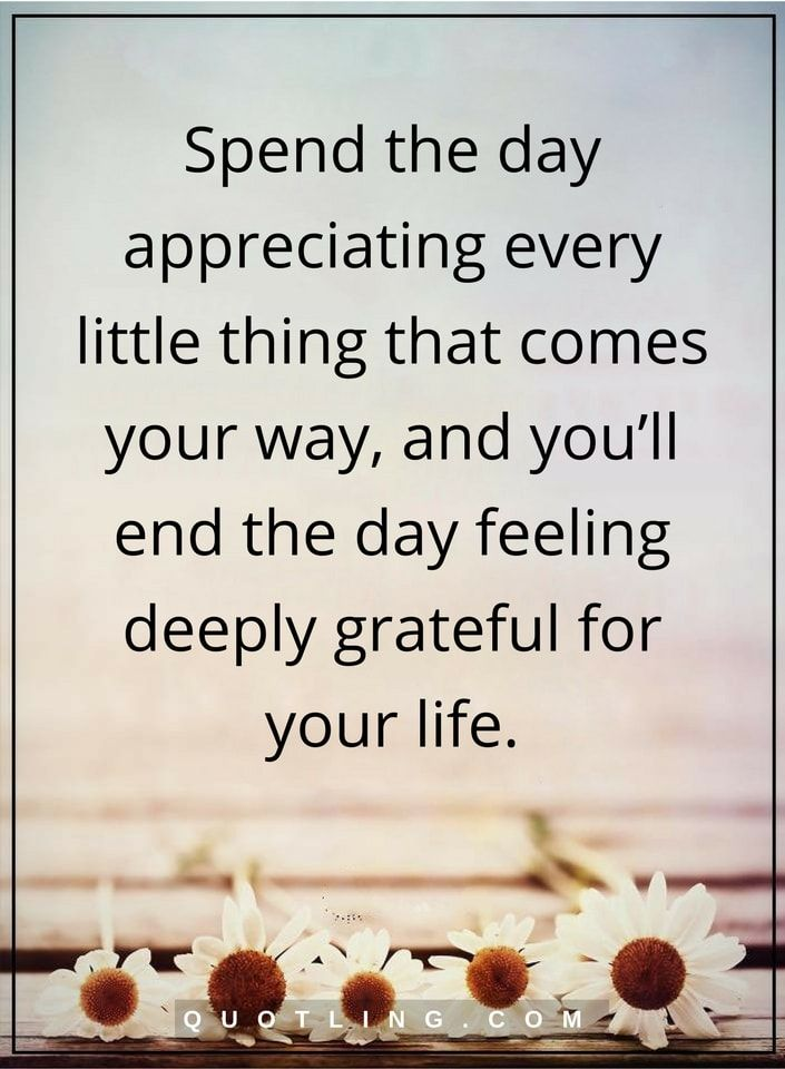 grateful quotes Spend the day appreciating every little thing that comes your way, and you'll end the day feeling deeply grateful for your life.
