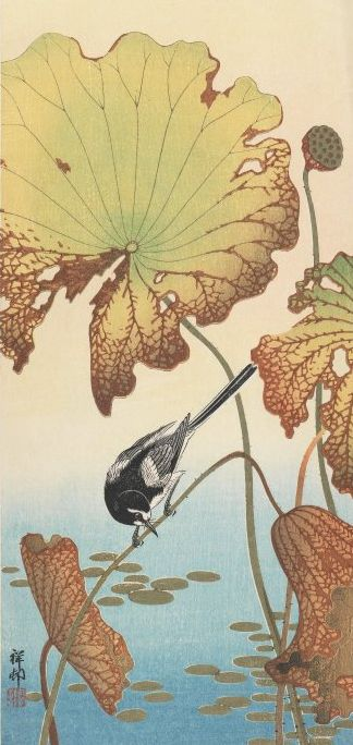 "Woodblock print called ""Wagtail and Lotus"", created between 1912 and 1918, Japan, by artist Ohara Koson"