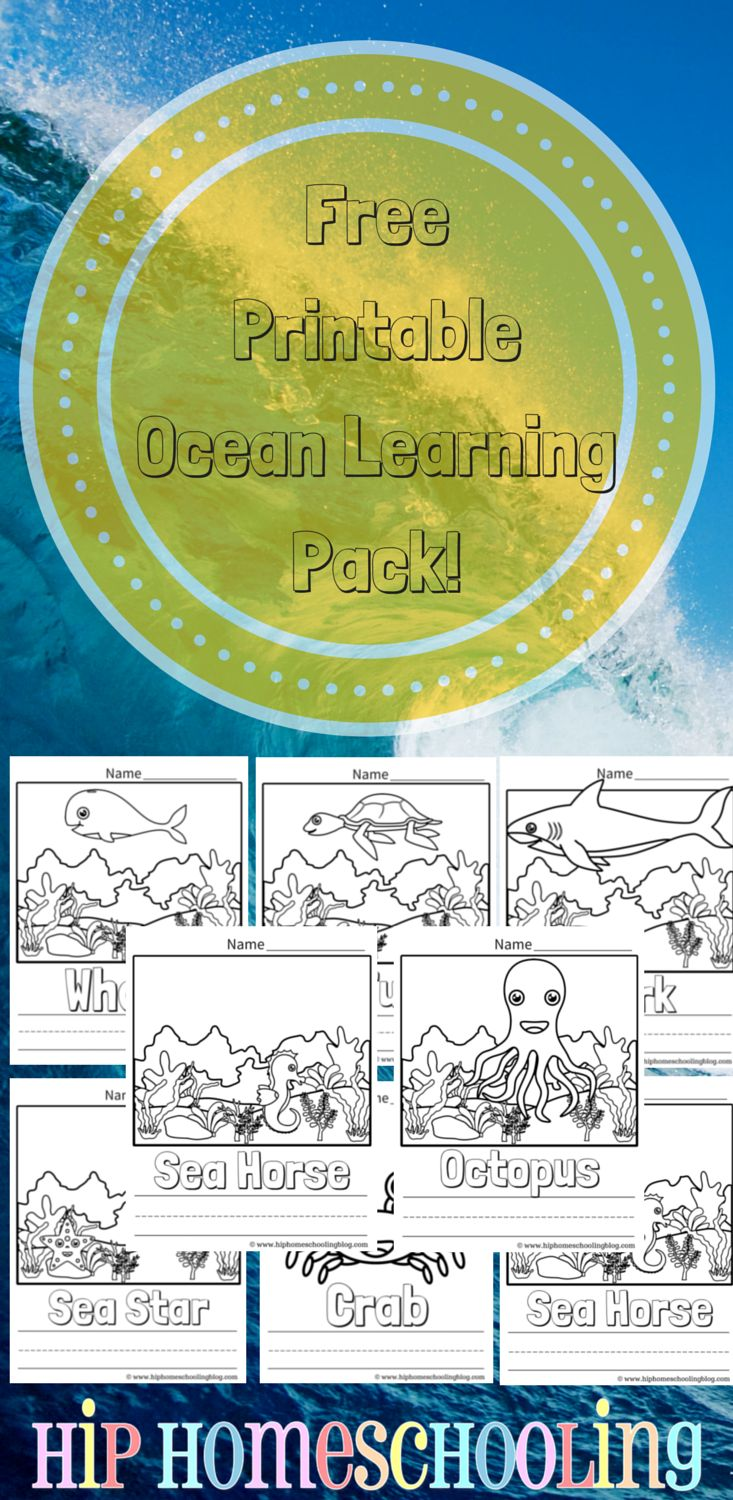 best ocean project images on pinterest fish animal crafts and