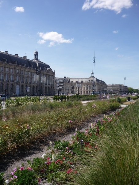 Bordeaux! where I was supposed to study abroad...