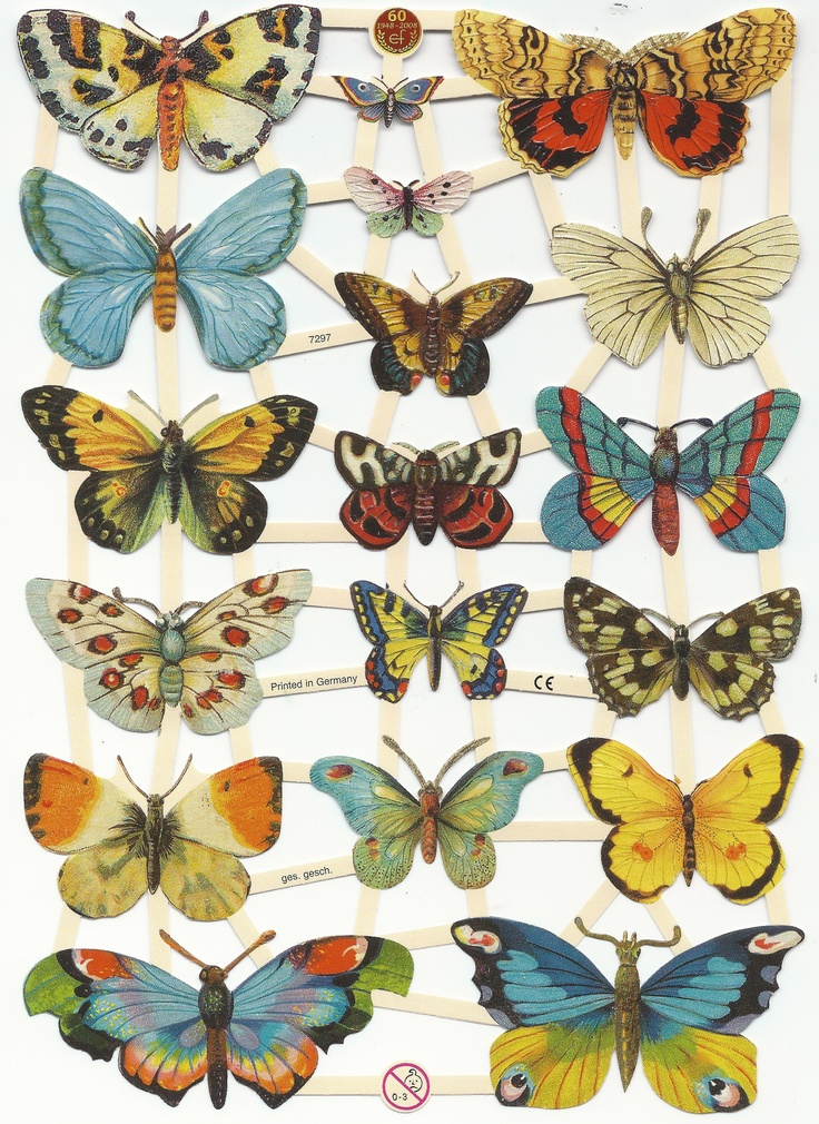 1000  ideas about printable butterfly on pinterest
