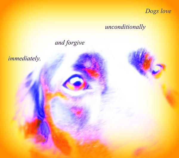 Dogs Love