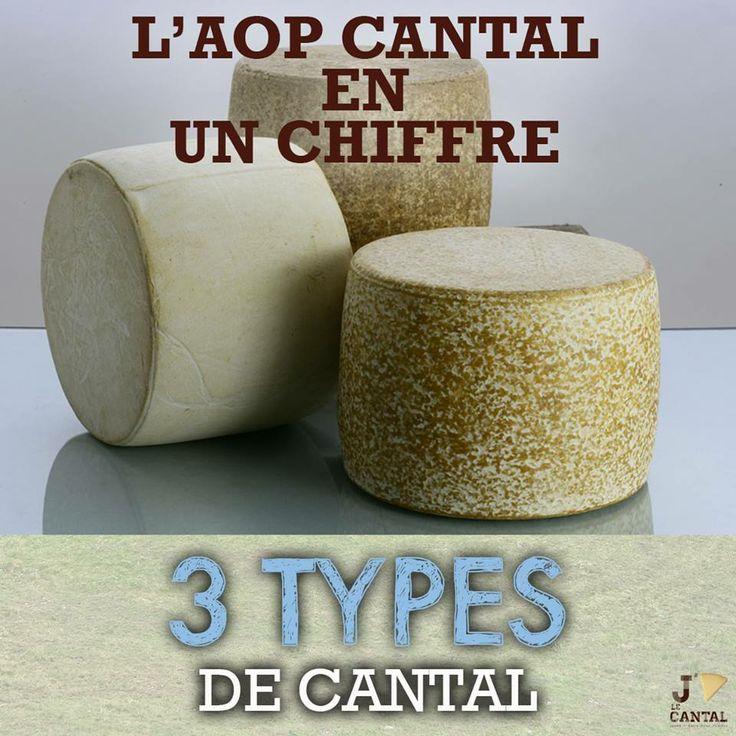 3, c'est le nombre de types de Cantal. Jeune, Entre-Deux ou Vieux.