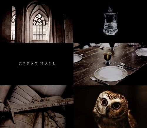 Hogwarts locations ;  [2/?]    → The Great Hall, Astronomy tower, Room of Requirement, Chamber of Secrets.