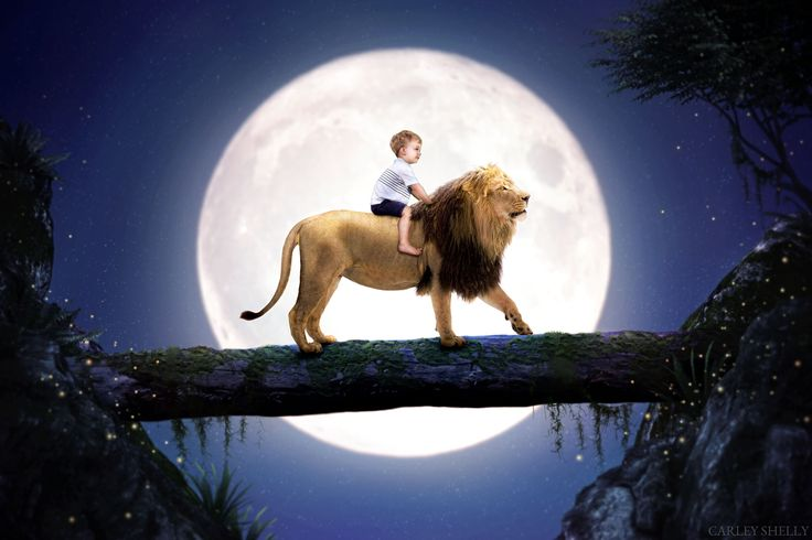 'The Most Curious of Friends' by Carley Shelly Photography           Boy Riding Lion with full moon in the background. Magical theme. Digital Art.