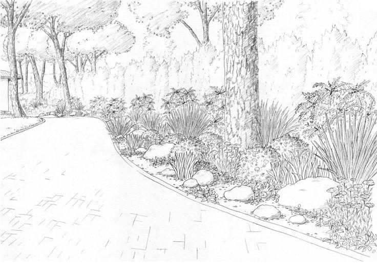 Landscape drawings