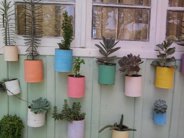 Jardim vertical com suculentas