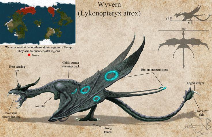 Wyvern (Lykonopteryx atrox) redesign by jbconcepts87.deviantart.com on @DeviantArt