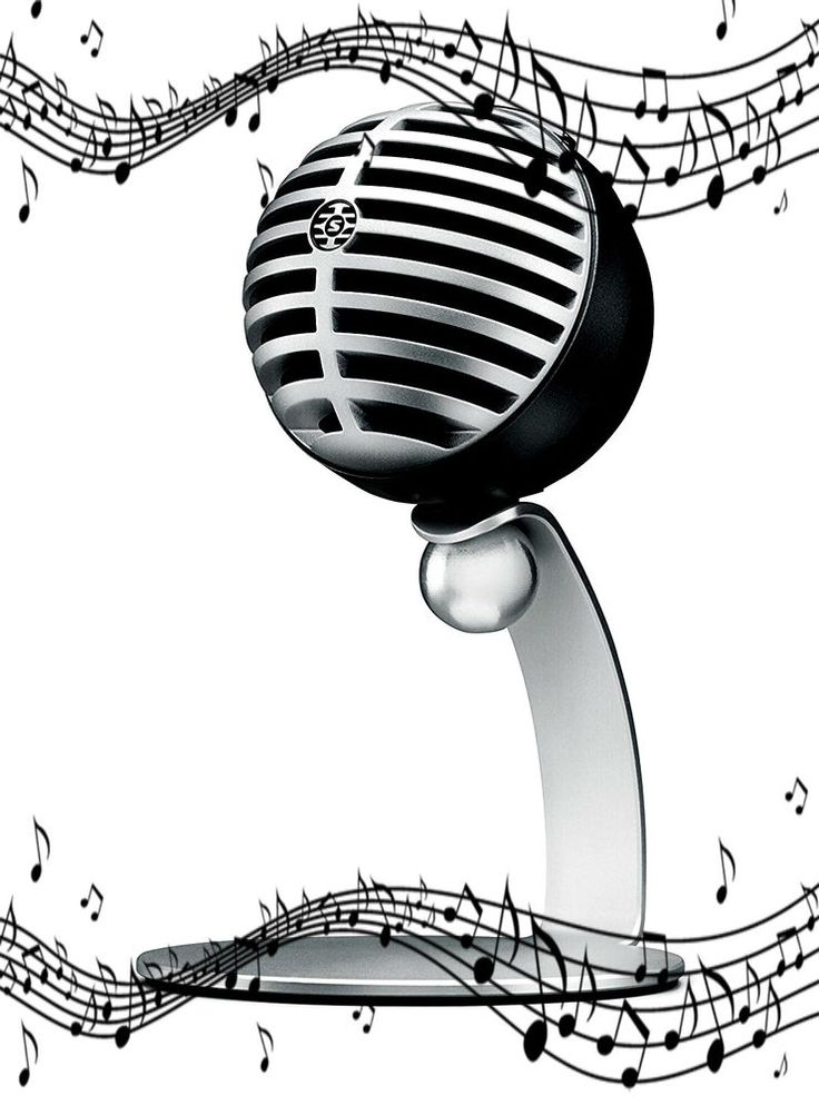 Desktop Computer Microphone Studio & Lightning Cable Recording Audio Studio Gray #USBMicrophone #MicrophoneOnly