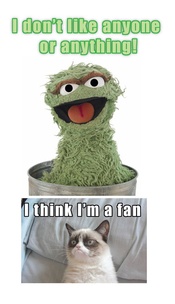 Tard the Grumpy Cat meets Oscar the Grouch | #Tard #GrumpyCat: Cookies Monsters, Green, Oscars The Grouch, Image, Sesame Streets, Things, Grumpycat Memes, Oscar The Grouch, Grumpy Cat Meme