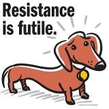 Weenie Dogs, Cant Resistance, So True, Weiner Dogs, Things Doxie, Dachshund Lovers, Dachshund Resistance, Wiener Dogs, Animal
