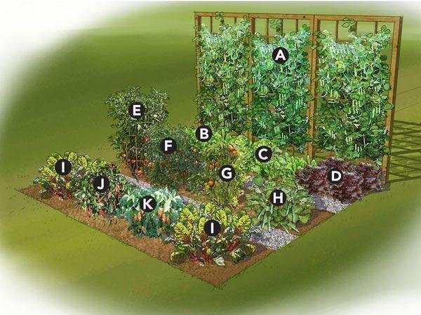 Summer Vegetable Garden Plan - a good idea for small gardens #gardenplanningideaslandscapes #gardendesignideasvegetable #summervegetablegardening #Containervegetablegardening #smallvegetablegardeningideas