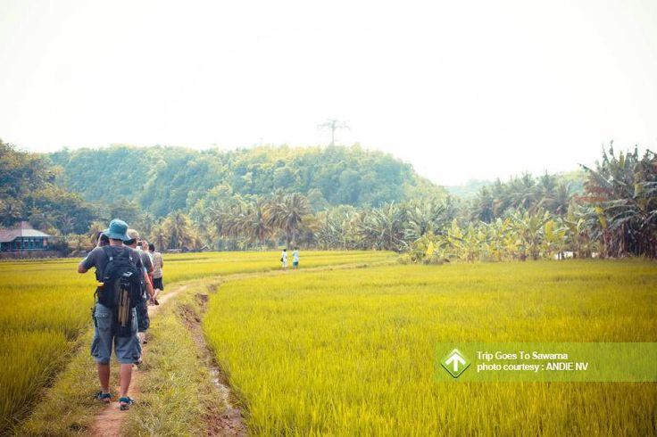 Trip Goes To Sawarna August 23 - 25, 2013 Link : http://triptr.us/te