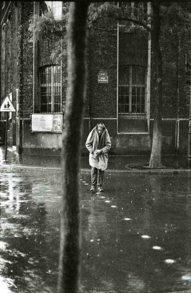 """Aboard a shipwreck train. Give my umbrella to the Rain Dogs."" - Tom Waits"