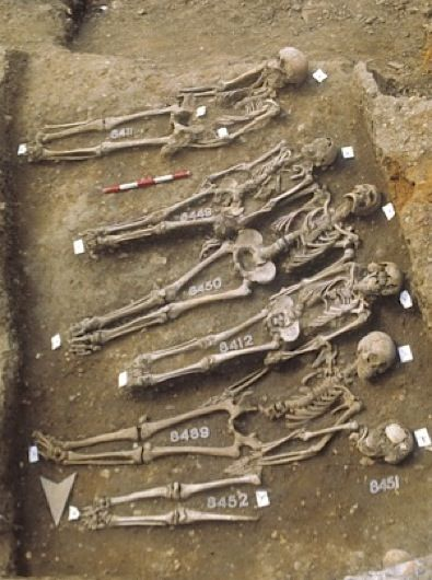 Medieval Black Death victims found under what is now the Royal Mint in London. DNA was extracted from the skeletons and scientists were able to recreate the genetic code of the Black Death bacterium © Museum of London Archaeology