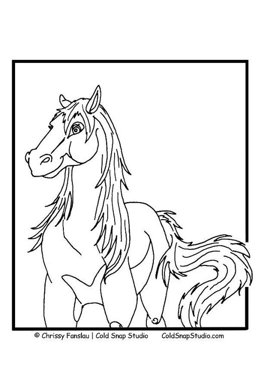 malvorlage pferd  ausmalbild 7366  malvorlagen