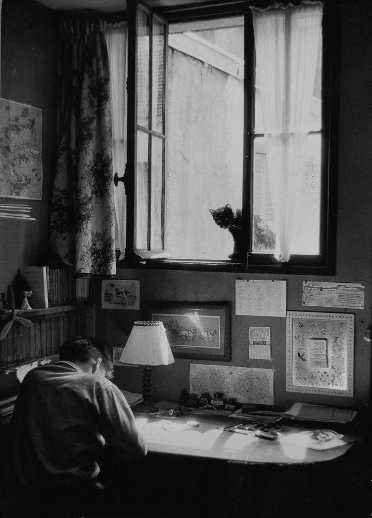 Willy Ronis - Vincent et le chat, Paris, 1955