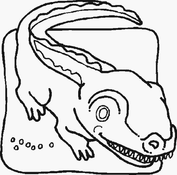 Best Gator Coloring Pages 21 Give a like for