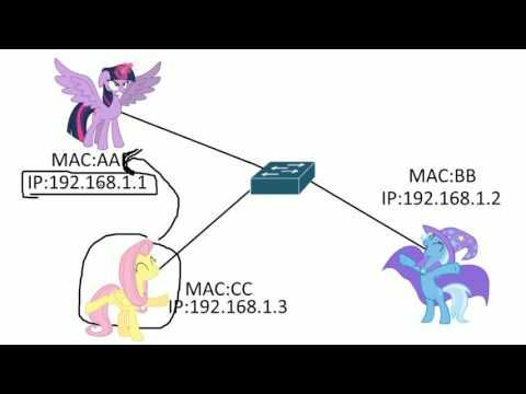 MAC vs IP address - YouTube ITN 5.1.4.1