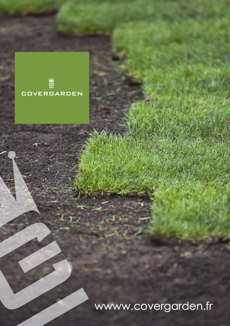 Souvent Les 25 meilleures idées de la catégorie Rouleau pelouse sur Pinterest OD25