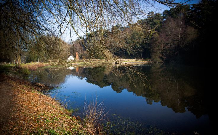 Beautiful day in Surrey