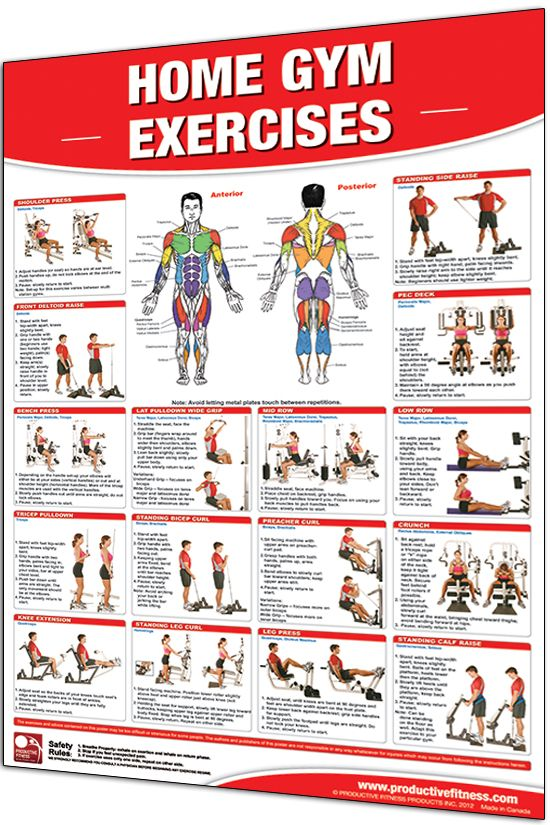 Home Gym Exercises  Laminated  Gym Workout Chart Exercise Chart