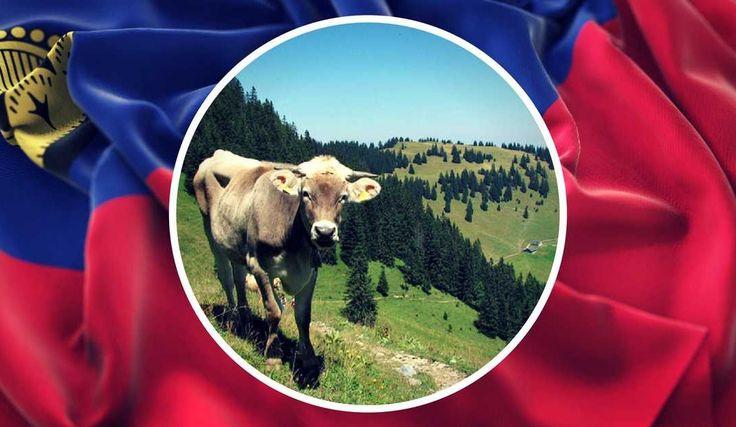 Why expats love to live in Liechtenstein