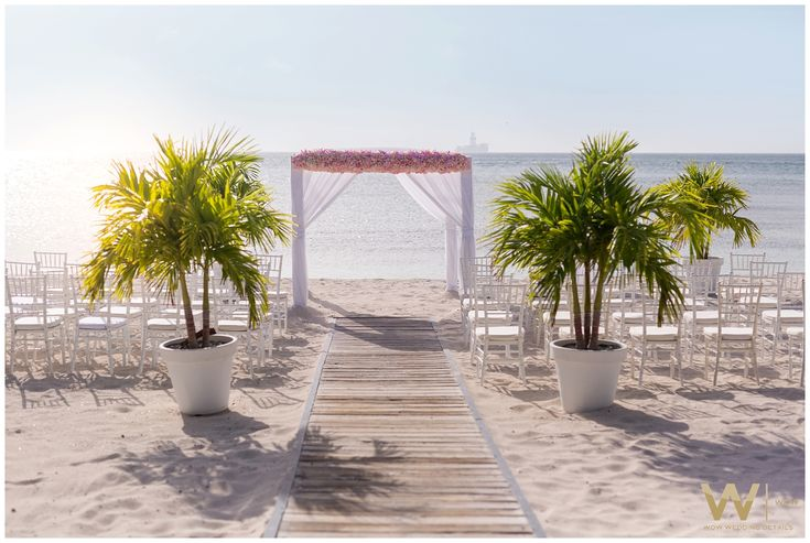 Wedding Ceremony - Wedding Photography @ Divi Resort & Occidental Aruba - Wedding Entertainment - Steelpan - Wedding Photography @ Divi Resort & Occidental Aruba -Destination Wedding - Tropical Island Wedding - Photography by Wow Wedding Details -  Wedding planning - Wedding Styling - Wedding Coordination - Curacao - Aruba - Bonaire - St. Maarten - St. Lucia
