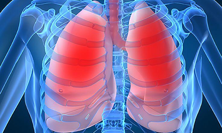 ¿Cuál es el beneficio real de la Respiración Profunda? Un Hecho Científico sorprendente. - http://www.cronobioyoga.com/cual-es-el-beneficio-real-de-la-respiracion-profunda-un-hecho-cientifico-sorprendente/