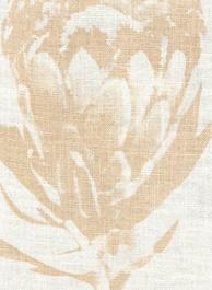 protea prints.