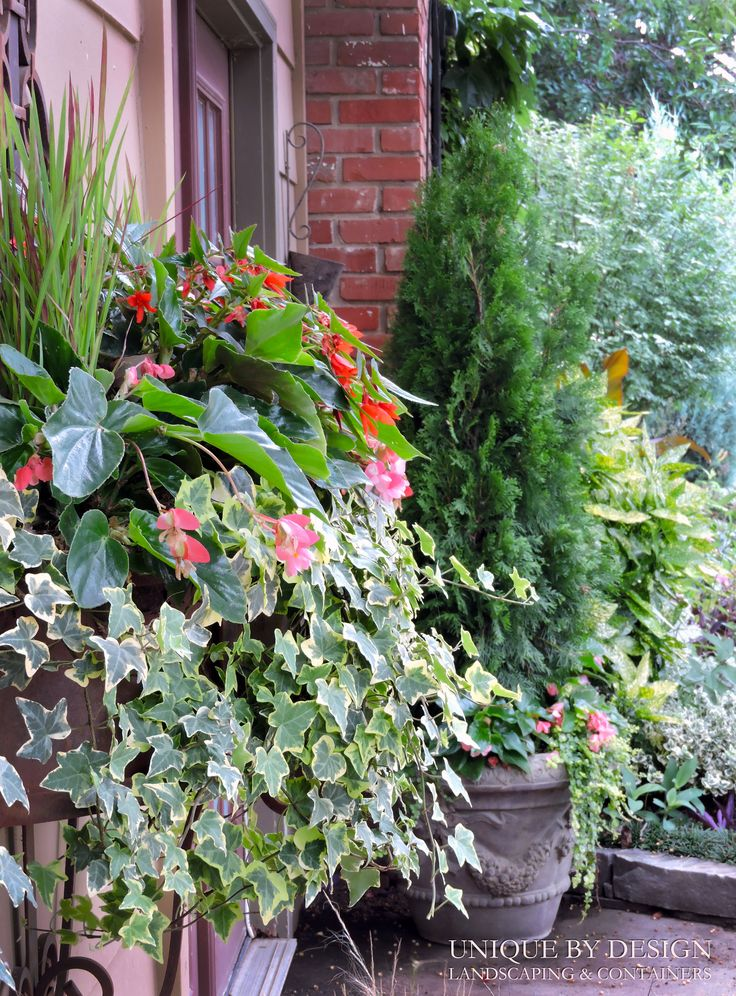 17 Best Images About Container Gardening Unique By Design