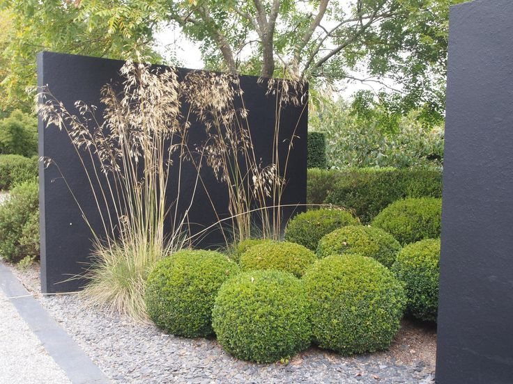 Opposition of shapes with dark grey cement privacy wall + shrubs (rectangles / circles) or types of plants (grasses / boxwood balls) garden by Jean Charles Chiron