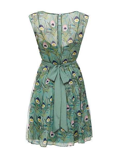 Peacock Chiffon Dress [Almost Famous]: House of Fraser