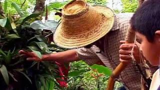 bichacue yath - YouTube