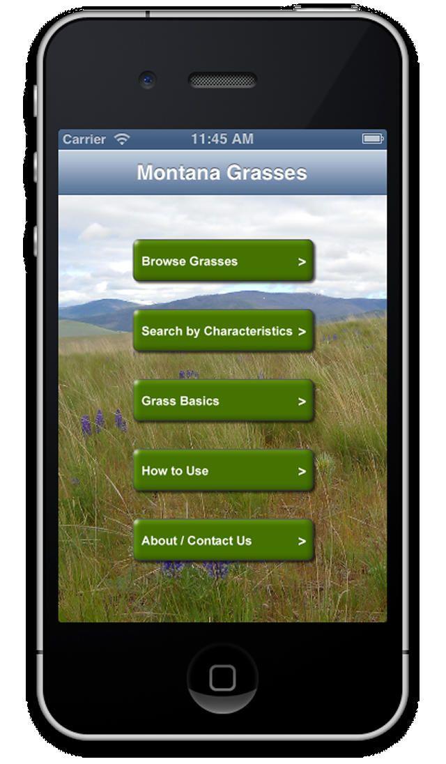 Montana Grasses App – Montana Grasses identification app for smart phones and tablets