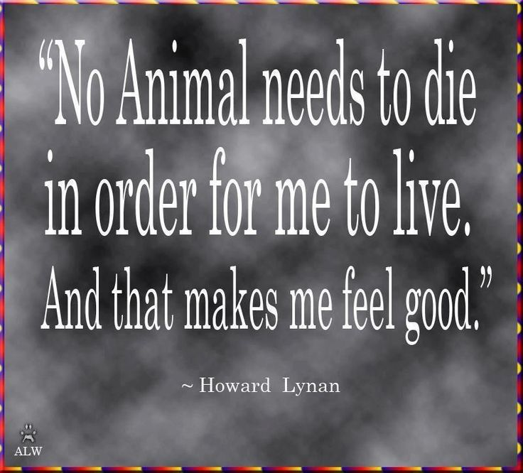 """No animal needs to die in order for me to live, and that makes me feel good"" Howard Lynan"