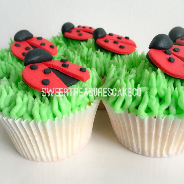 #vanilla and #buttercream #ladybug #cupcake for little #Emma who turned #1 😍