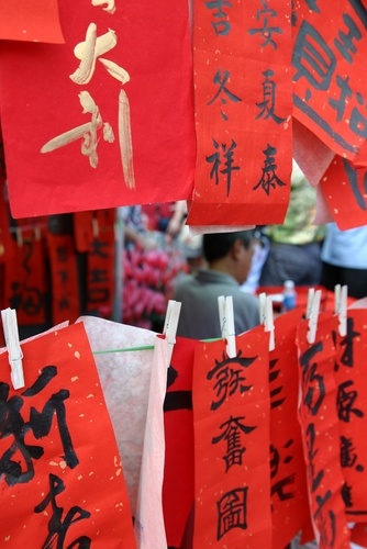 Chinese new year holiday falls on Feb 10, 2013. this is different than the solar calendar which has the New Year start on 2/4/13. Feb 4th is the date used to calculate Feng Shui and Chinese Astrology birth chart analysis.  #FengShui #ChineseNewYear http://patricialee.me