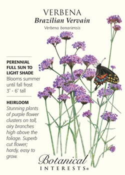$1.79. Verbena bonariensis. Stunning plants of purple flower clusters on tall, airy branches. Superb cut flower. One of our personal favorites! HEIRLOOM.