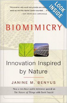 Biomimicry, Innovation Inspired by Nature
